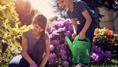 become a gardener